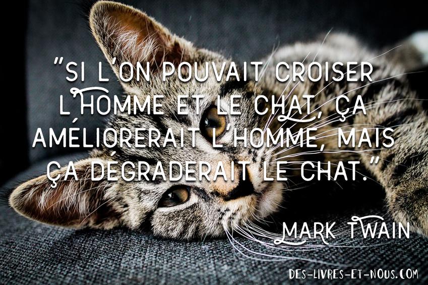 citation Mark Twain